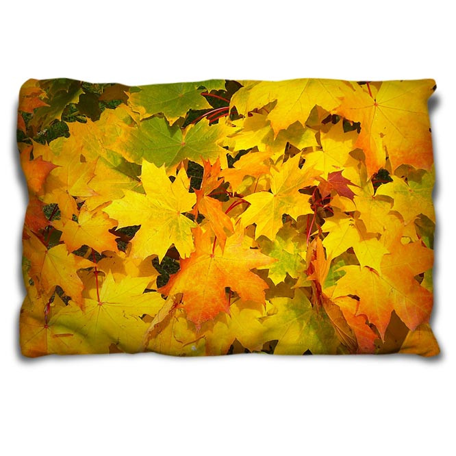 Coussin rectangulaire 30*50 cm